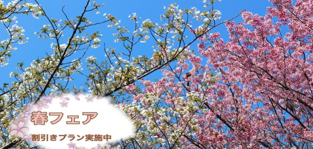 伊香保温泉桜春2
