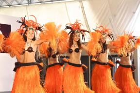 Hawaiian Festa 2010_3049176
