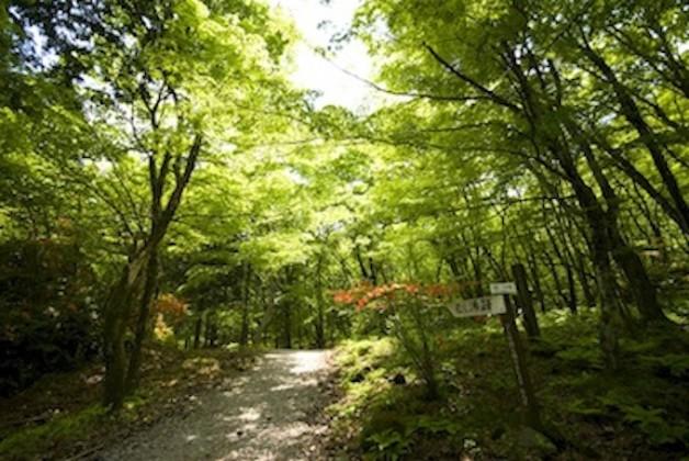 伊香保森林公園